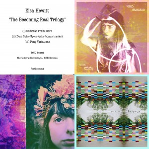 Elsa Hewitt - 'The Becoming Real Trilogy